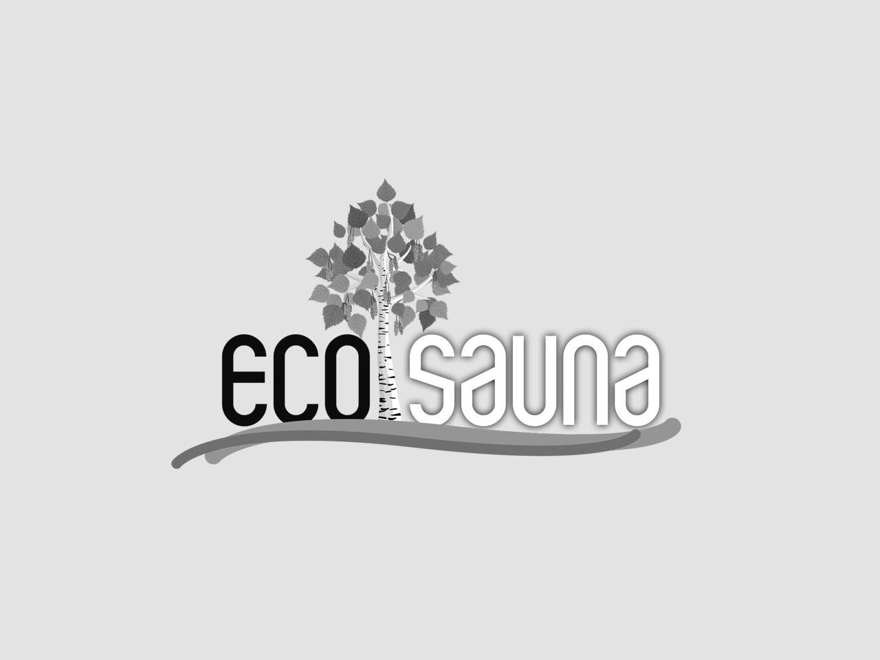 ecosauna-siti-web-seo-posizionamento-valle-camonica-contessi-fostinelli-